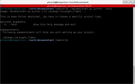 developer-assistant-1