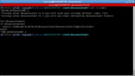 developer-assistant-4