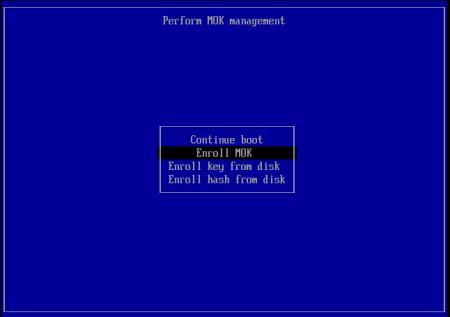 Screenshot_kvm-rawhide-64-uefi-1_2014-02-27_14_00_13_crop